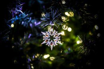 Swarovski Christmas Tree Lighting